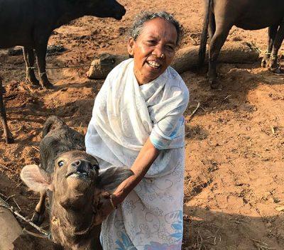 Kalima and her baby buffalo