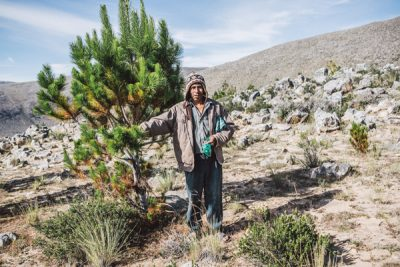 Norberto in Bolivia working on the reforestation project