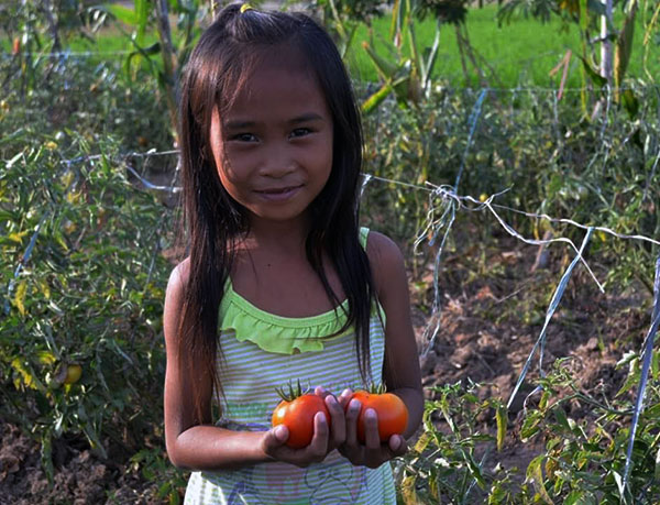Gardening Project   Philippines
