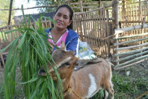 Badet with goat in the Philippines
