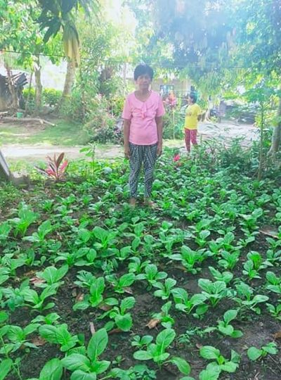 Backyard gardens in Outreach's Philippines community 3