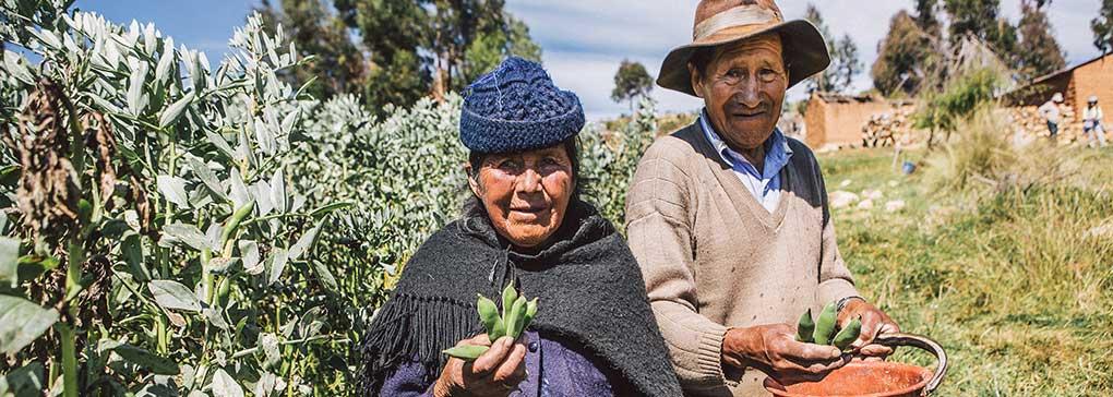 Bolivian Couple in Field Program