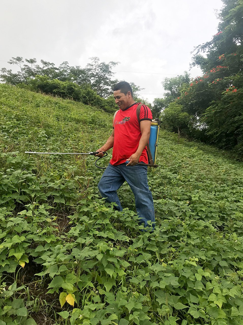 In La Leona, Nicaragua, community-led agriculture project