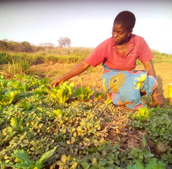 DR Congo woman working in garden project