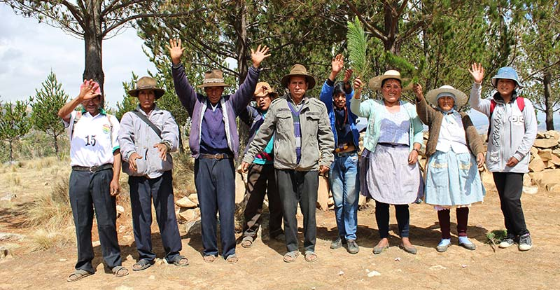 Bolivia community members planted 3,000 trees in 2020